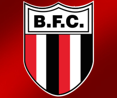 botafogo logo