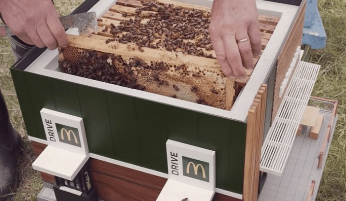 mcdonalds abelha