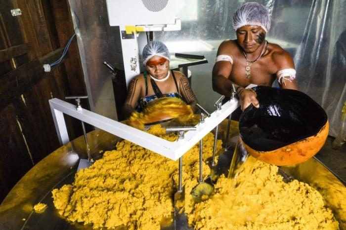 naturaltech origens do brasil