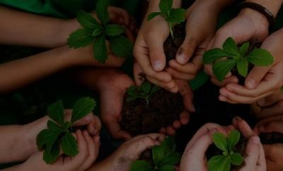 artigo meio ambiente