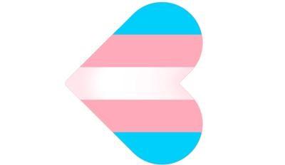 quem disse berenice marcha trans