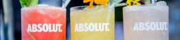 absolut nights_d