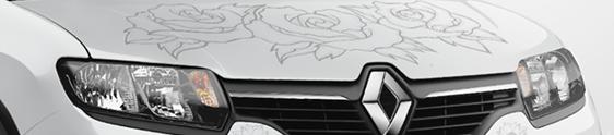 Ação promocional da Renault tatua Sandero Stepway