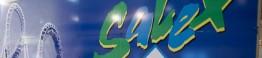 Salex-logotipo_d