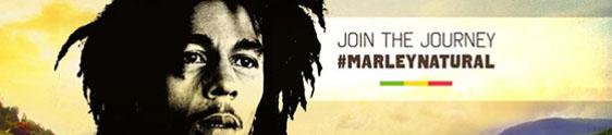 Bob Marley vira marca de maconha nos Estados Unidos