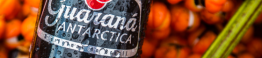 Guaraná Antarctica Black_d