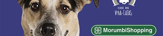 MorumbiShopping promove feira de adoção de animais