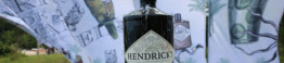 hendricks gin live marketing 10_d