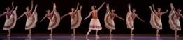 mostra paranaense de dança _ D