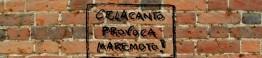 Celacanto Imagem 1_d