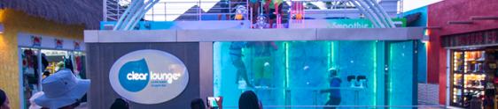 Bar serve clientes dentro de um aquário