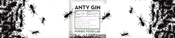 Destilaria de Cambridge cria Gin feito com formigas