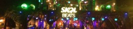 tomorrowland-skol-beats-6-560x421_d