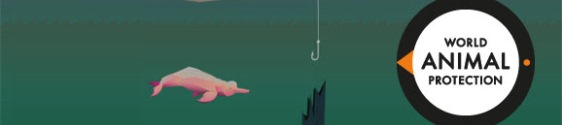 Game pretende incentivar a proteção do boto cor-de-rosa