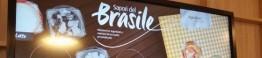 brasil expo milao_d